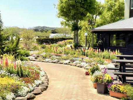 咖啡館的明亮的花園與花壇