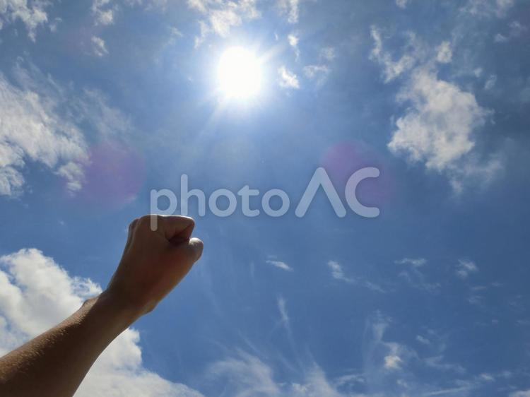 眩しい太陽と青空4の写真