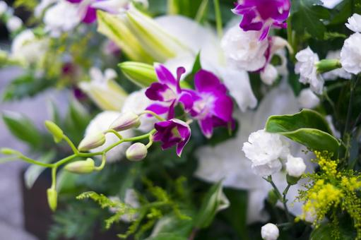 Beautiful orchid flower ornament