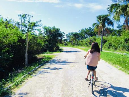섬을 자전거