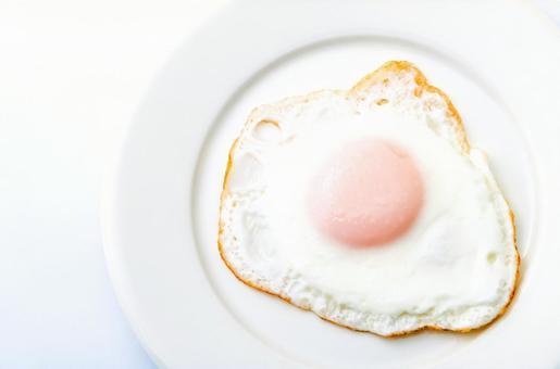 접시에 탄 계란 후라이
