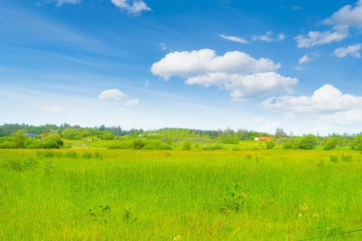 Meadow, blue sky and country house