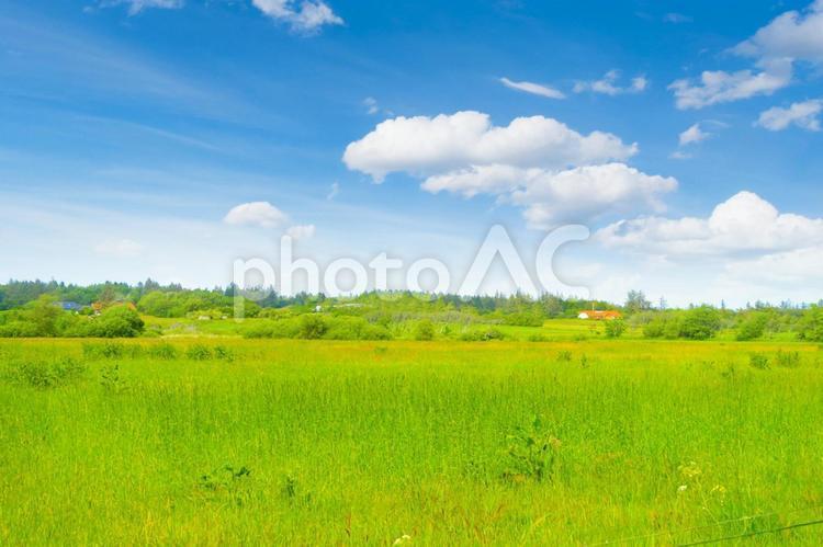 草原と青空と田舎の家の写真