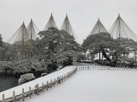 Heavy snow Kenrokuen Yukitsuri