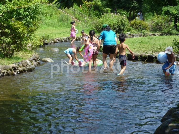 川遊びの写真