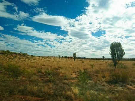 Devastated land