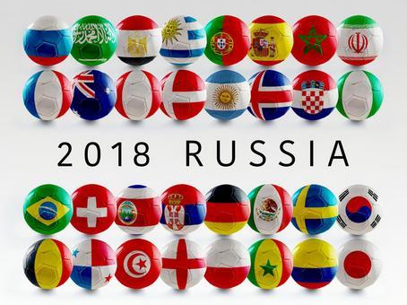 월드컵 러시아 대회