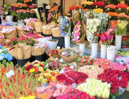 Flower shop [Estonia] Tallinn