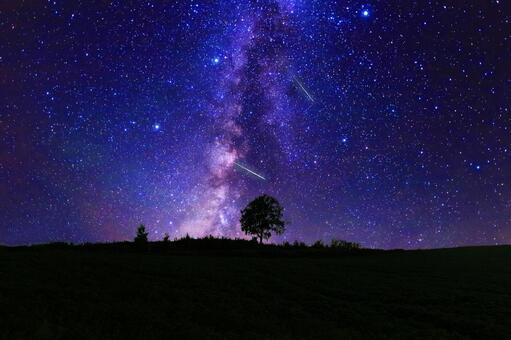 滿天星斗的天空和草地