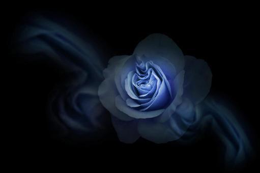 玫瑰色/黑色背景