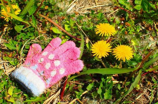 Dandelions and winter forgotten items (gloves)