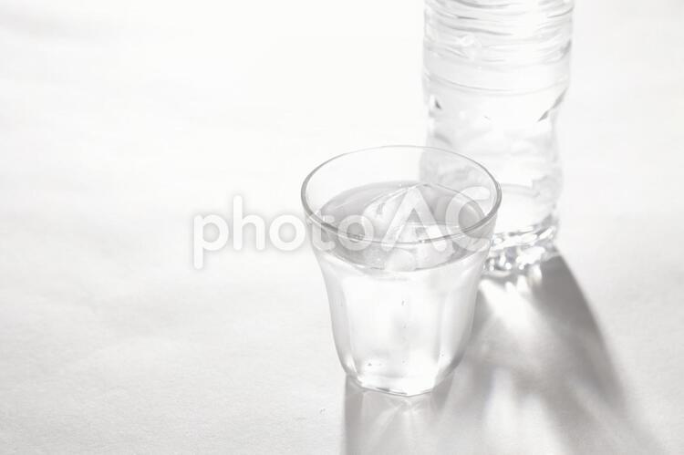 飲物31の写真