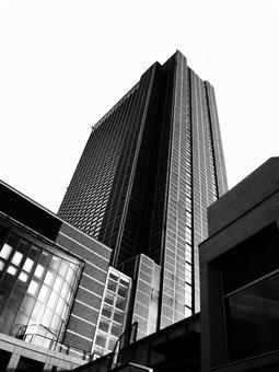 흑백의 빌딩