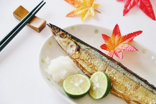 Grilled saury with salt