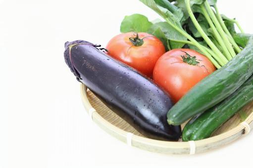Summer vegetables that entered the monkey 6