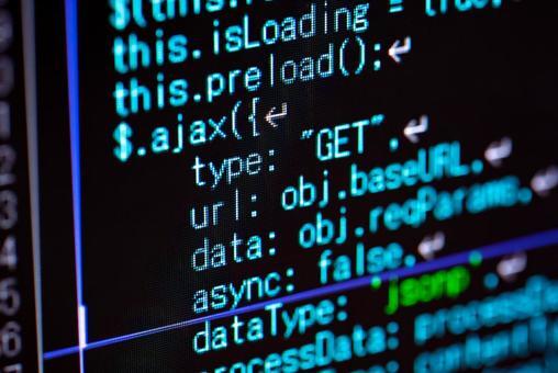 System development / IT development / programming / program source code