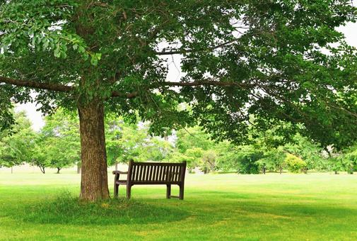Wood and bench