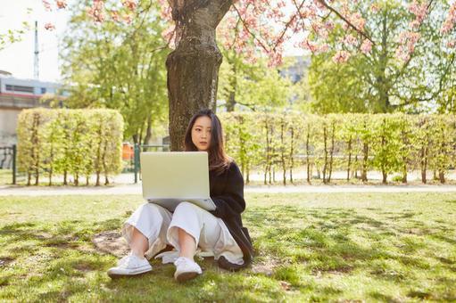 Asian woman 2 using laptop under tree