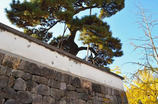高崎城遺址石垣和土牆