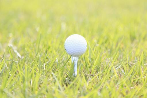 Grass and golf ball 1