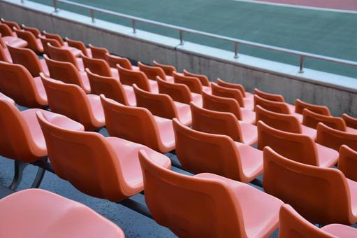 Stadium Stadium