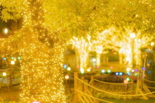 Glittering light of Christmas