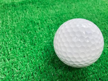 Golf ball / lost ball / golf practice / artificial turf / sports