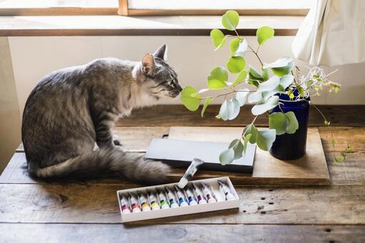 Sabatra cat, eucalyptus and paint