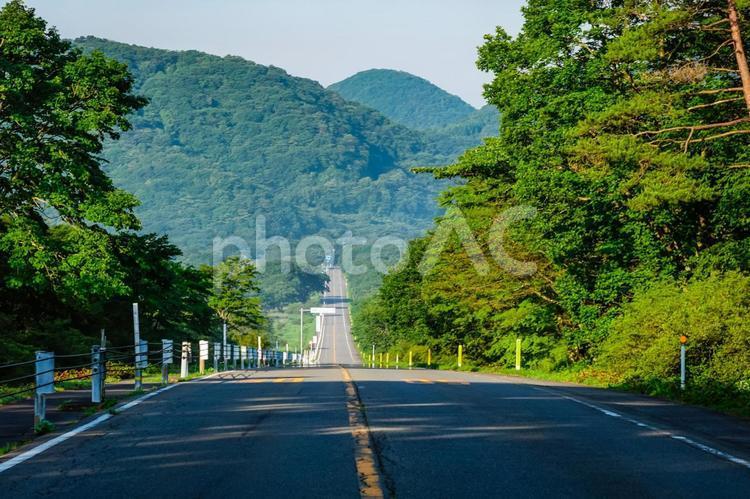 県立榛名公園(群馬県高崎市)、一直線に続く榛名湖メロディーライン(走ると音楽が聞こえる道路)、ゆうすげの道付近の写真