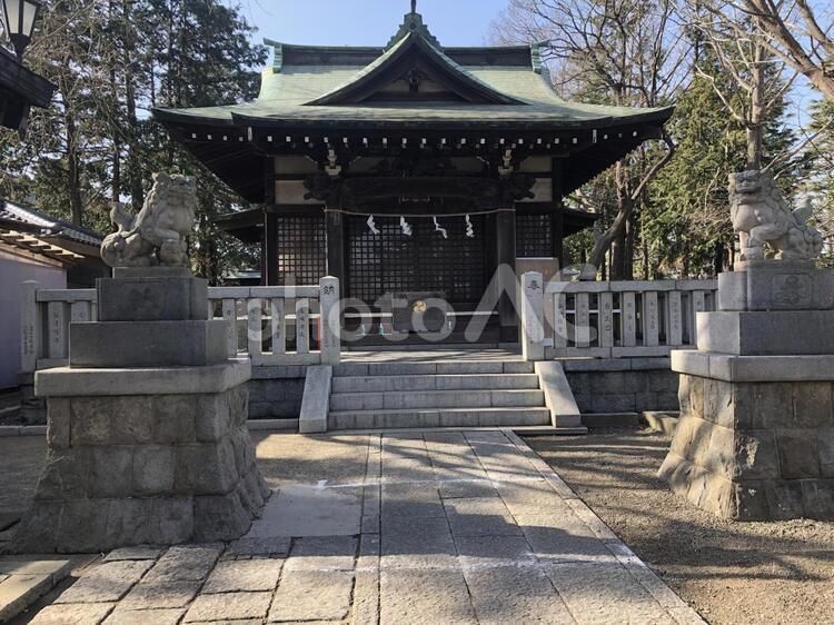 小杉神社の写真
