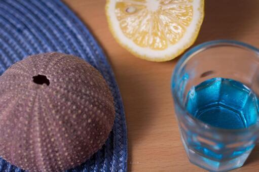 贝类和蓝色饮料1