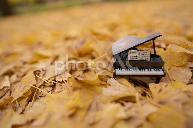 イチョウの落ち葉とピアノの写真
