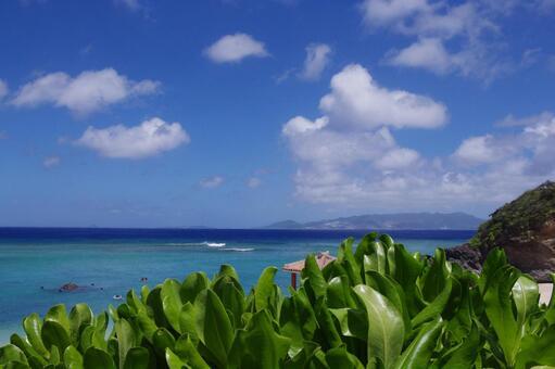 Okinawa sea 24