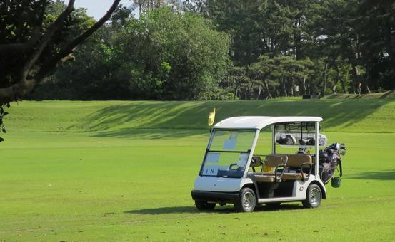 Golf course and cart