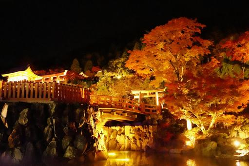 Autumn leaves and illumination of the temple