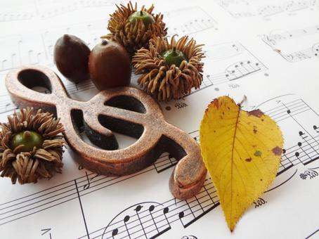 Music and autumn (tree nuts and yellow fallen leaves)