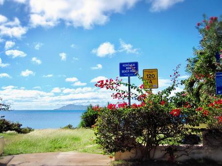 Hawaiian scenery