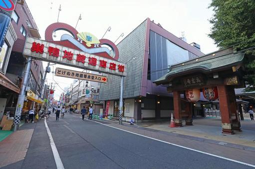 Koganji Temple Gate and Jizo Shopping Street