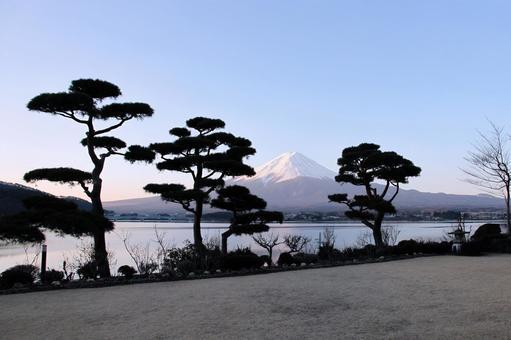 Mt. Fuji and Matsuko lake side pine