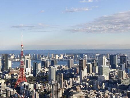 Tokyo Bay overlooking with Tokyo Tower