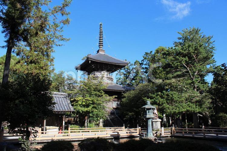 霊山寺 第一番札所 境内(お遍路)徳島の写真