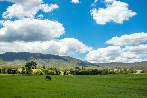 Ranch grazing field large nature horse huge vast wide wide sky cloud earth earth nature country living 4