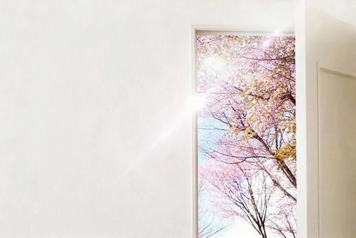 New Life Door 2 New Life Image Door Door Sakura Haru