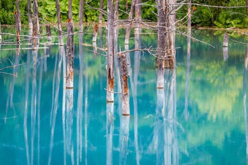 Blue pond Mika