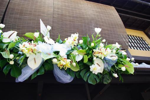 교토 기온 시라카와 꽃 장식