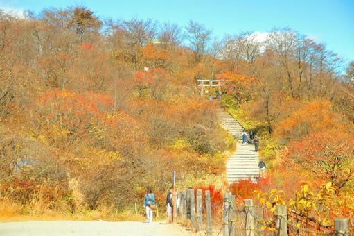春藤富士山神社