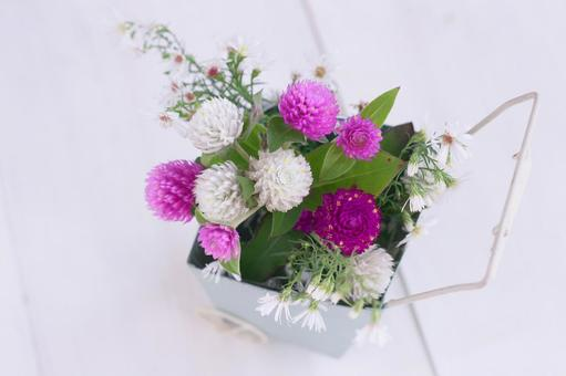 Flowers in carry