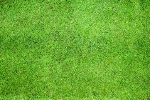 Lawn background material