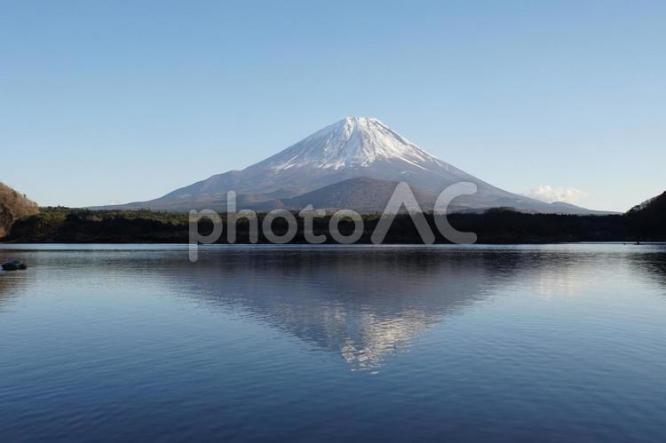 精進湖の写真