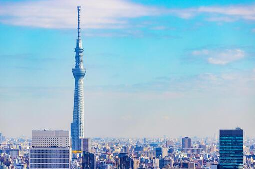 Tokyo Sky Tree and townscape